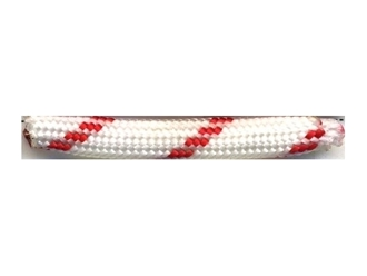 Picture of Life Guard - 100 Feet - 550 LB Paracord
