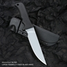 Picture of Large Fishbelly Fixed Blade Knife (Plain Edge)