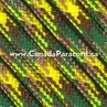 Anaconda - 100 Feet - 550 LB Paracord