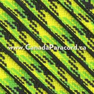 Dragon Fly - 1,000 Foot - 550 LB Paracord