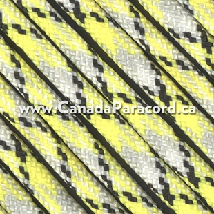 Infectious - 100 Feet - 550 LB Paracord