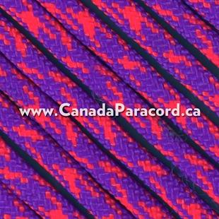 Suns - 100 Feet - 550 LB Paracord