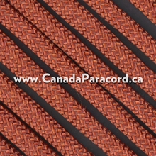 Rust - 100 Feet - 550 LB Paracord