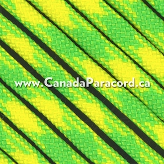 Dayglow - 25 Feet - 550 LB Paracord